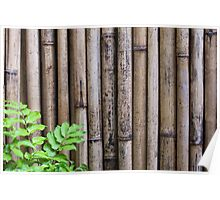 Dried bamboo background Poster