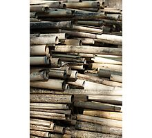 Cut and dried bamboo Photographic Print