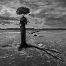 Empty Nest by KLIMAS