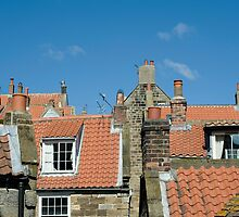 Cottage roofscape by photoeverywhere