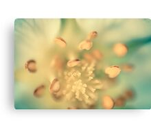 Flower 2 Canvas Print