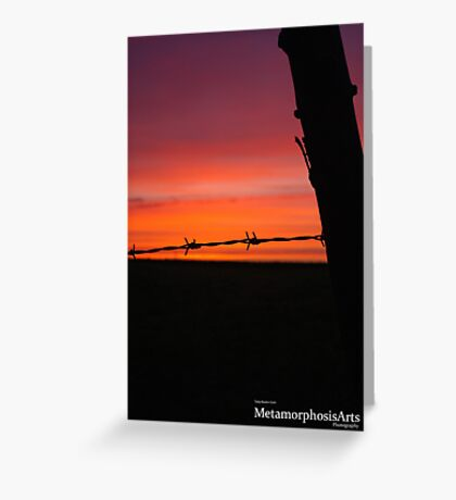 Fence Post Sunset Greeting Card