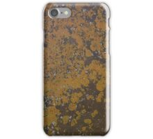Moss on Stone iPhone Case/Skin