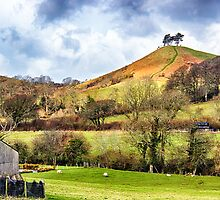 Colmers Hill Landscape by Vicki Field