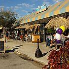 Tropical Restaurant in Florida by Zal Lazkowicz