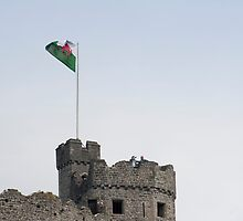 The Cardiff castle keep by photoeverywhere
