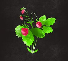 Strawberry by randoms