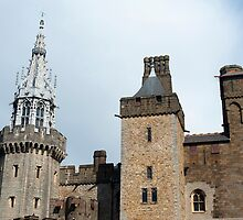 Exterior facade Cardiff Castle by photoeverywhere
