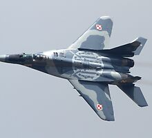 Polish Mig 29 by Mike Rivett