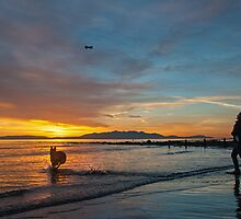Kira Chasing Clyde Sunset on Irvine Beach. by George Crawford