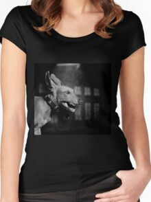 Dogs with game face on .27 Women's Fitted Scoop T-Shirt
