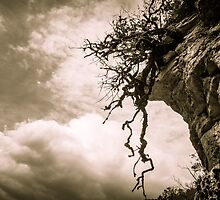 Dramatic Scenery at Vikos Gorge by PhotoSaga