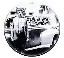 cat with a Car Photographic Print