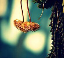 Alien Cactus by tropicalsamuelv