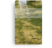 Every Walk With Nature Canvas Print