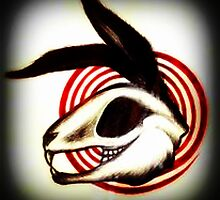 Skull of Rabbit by herbythegoat