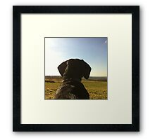 sausage dog on the look out! Framed Print
