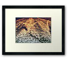 Meadowbank 2013 I Framed Print