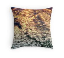 Meadowbank 2013 I Throw Pillow