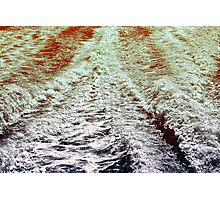 Meadowbank 2013 II Photographic Print