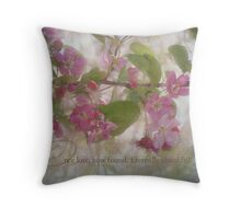 Once lost~inspiration Throw Pillow