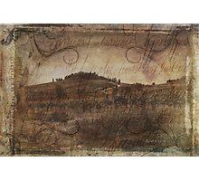 Wine Farm - Radda in Chianti Photographic Print