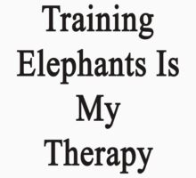 Training Elephants Is My Therapy  by supernova23