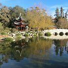chinese garden by Karol Franks