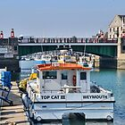 Top Cat At Weymouth, Dorset.UK by lynn carter