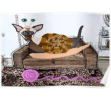 Goldenberry The Siamese Snail Cat Poster