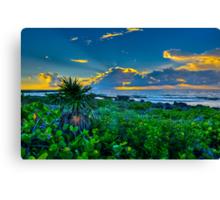 Playa Seascape Canvas Print