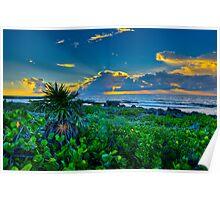 Playa Seascape Poster