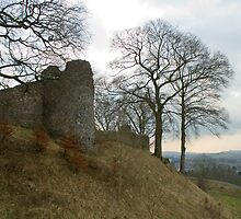 Ruins of Kendal Castle by photoeverywhere