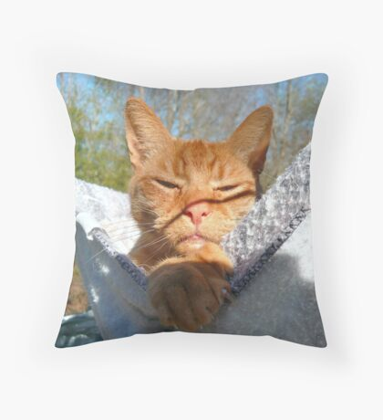 Blissful Contentment Throw Pillow