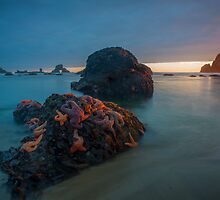 West Coast Sunset by ZachKracht