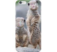 The Meerkats iPhone Case/Skin