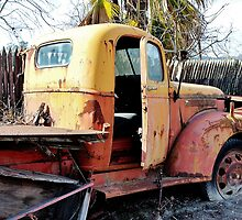 Retired Truck in the Orchard by Martha Sherman