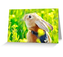 Happy Easter (^_^) Greeting Card