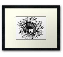Ink sunflower Framed Print