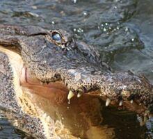Alligator Action Sticker