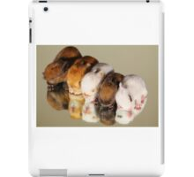 Super Cute Kits iPad Case/Skin