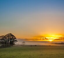 Autumn Sunrise by Andy McDonald