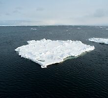 Iceberg by photoeverywhere