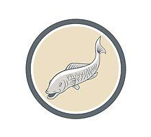 Trout Swimming Cartoon Circle Photographic Print