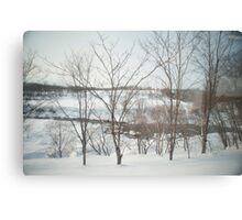 hokkaido winter Canvas Print