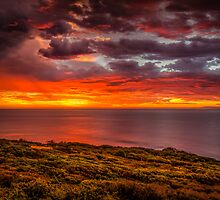 Bells Beach Sunrise by Russell Charters