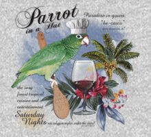 parrot in a hat 8 by redboy