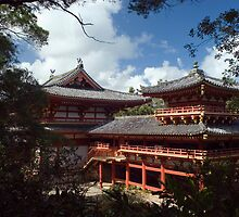 Byodo-In Buddhist Temple buildings by photoeverywhere