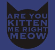 Are You Kitten Me Right Meow?? by Lana Rivett