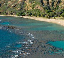 Hanuma Bay Corals by photoeverywhere